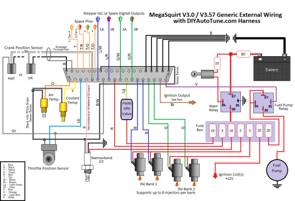 ms3 wiring diagram online schematic diagram u2022 rh muscle pharma co